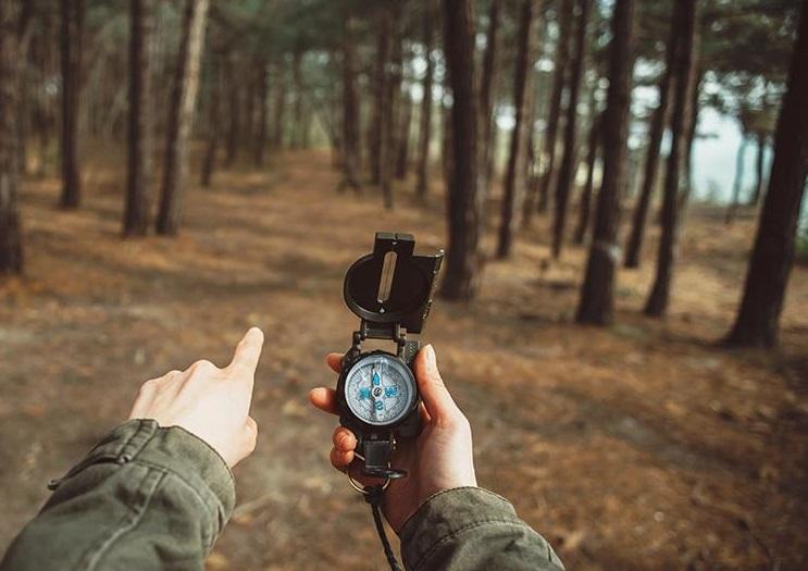 Что делать, если заблудился в лесу?