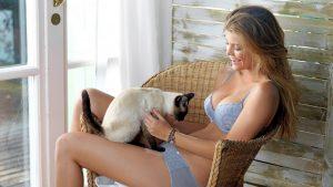 Кошка в доме при беременности
