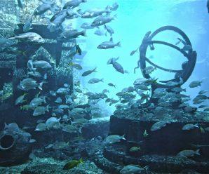 Исчезнувшая Атлантида (часть первая)